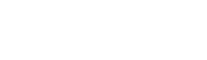 Development Sourcing Advisors Group logo